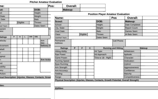 PROFESSIONAL GRADE SCOUTING REPORT (13+)